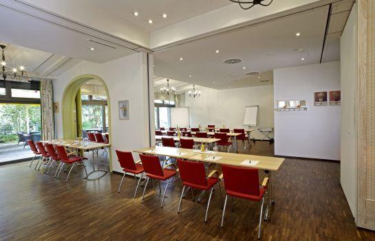 Clarion Hotel Hirschen-Freiburg im Breisgau-Tagungen