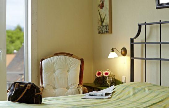 Clarion Hotel Hirschen-Freiburg im Breisgau-Single room standard