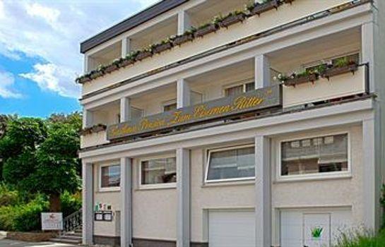 Eiserner Ritter Landgasthof