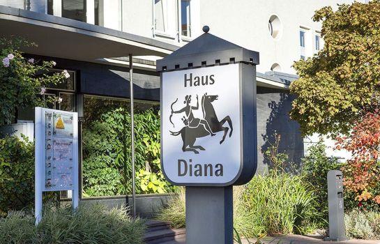 Heidelberg: Diana Garni