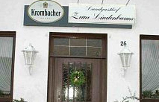 Zum Lindenbaum