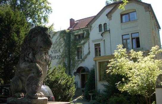 Dresden: Villa Herzog