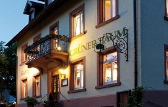 Gruener Baum Gasthaus-Merzhausen-Aussenansicht