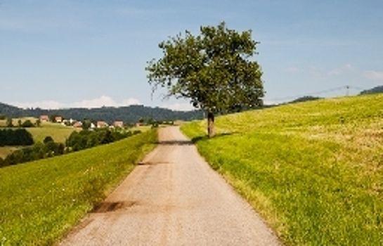 Gruener Baum Gasthaus-Merzhausen-View