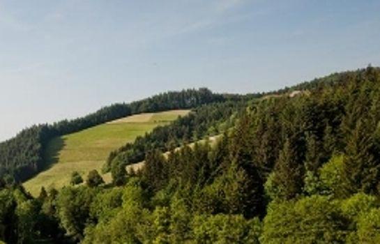 Gruener Baum Gasthaus-Merzhausen-Umgebung