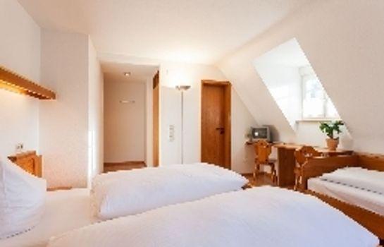Gruener Baum Gasthaus-Merzhausen-Standardzimmer