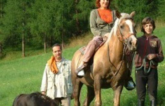 Bauernhof Zirbenhof - Urlaub auf der Alm