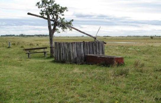 Bauernhof Weingut - Ferienwohnungen Kracher