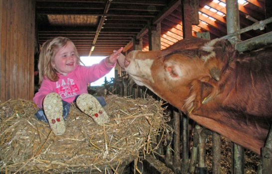 Bauernhof Ferien auf dem Bauernhof Kirchbichl