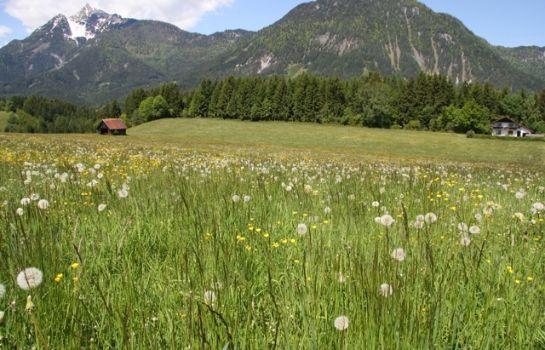 Bauernhof Lechnerhof