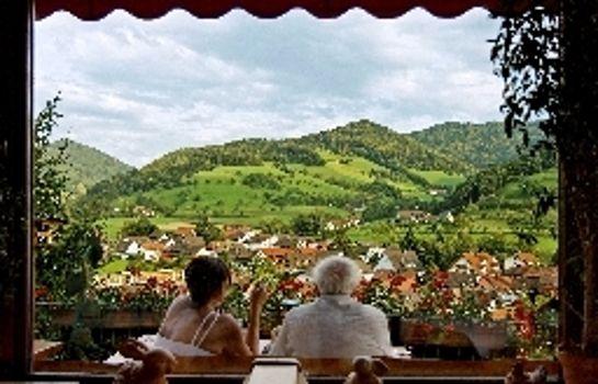 Eichberg Gasthaus Pension-Glottertal - Glotterbad-View