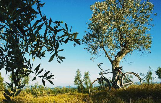 La Tabaccaia-Montaione-Hotel outdoor area