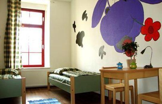 Sleepy Lion Hostel Youth Hotel & Apartments