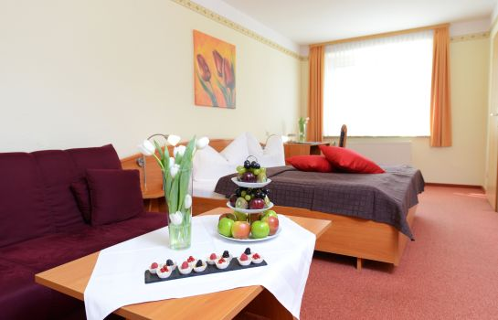 Lengenfeld: Hotel Goldenes Herz