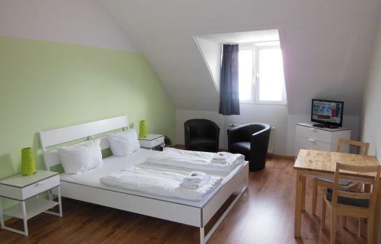 StayInn Hostel und Gaestehaus-Freiburg im Breisgau-Double room standard