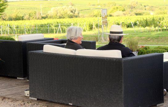 Am Weintor uebernacht-Schweigen-Rechtenbach-Terrace