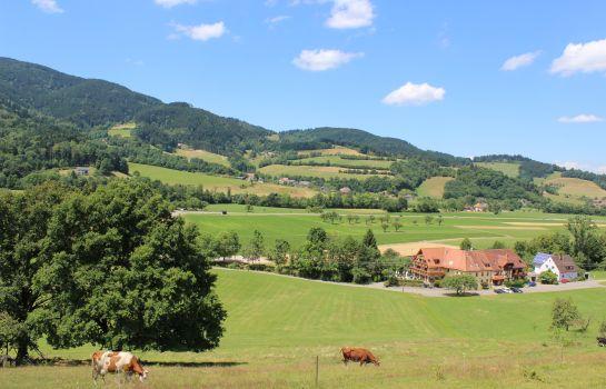 Zum Schuetzen Landgasthof-Oberried-View