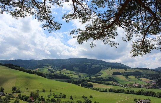 Zum Schuetzen Landgasthof-Oberried-Ausblick