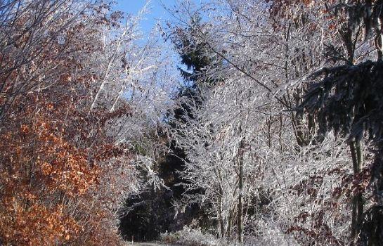 Nichtraucher- Ferienwohnung mit Wintergarten Einze