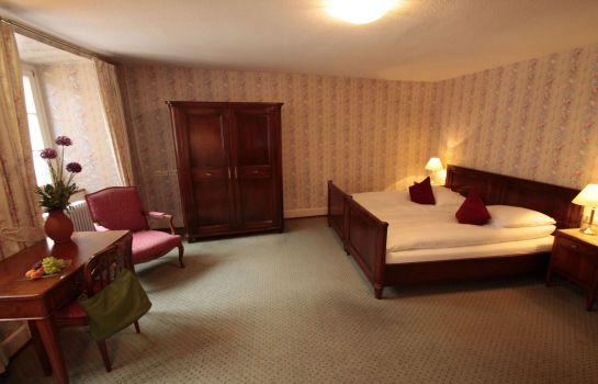 HOTEL OBERKIRCH-Freiburg im Breisgau-Room