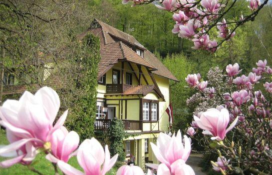 Lettisches Haus-Freiburg im Breisgau-Aussenansicht