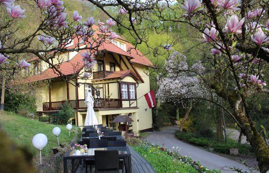 Lettisches Haus-Freiburg im Breisgau-Terrasse