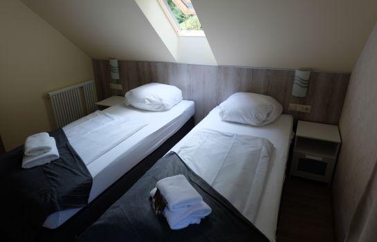 Lettisches Haus-Freiburg im Breisgau-Doppelzimmer Standard