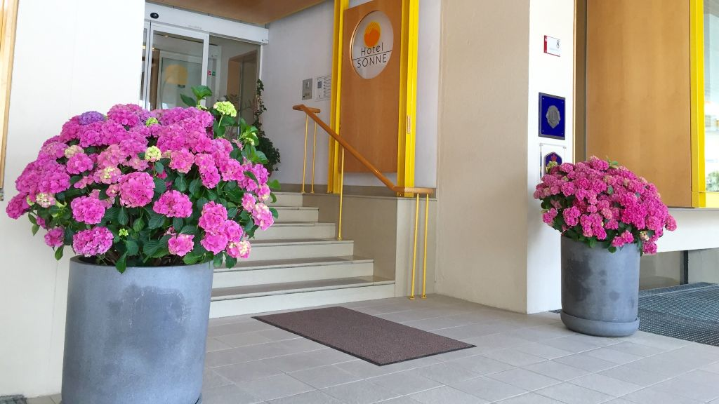 Hotel Sonne Lienz Lienz Hotel outdoor area - Hotel_Sonne_Lienz-Lienz-Hotel_outdoor_area-25311.jpg