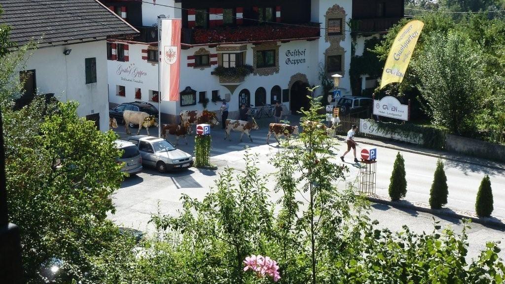 Hotel Landgasthof Gappen Kramsach Aussenansicht - Hotel_Landgasthof_Gappen-Kramsach-Aussenansicht-12-433559.jpg