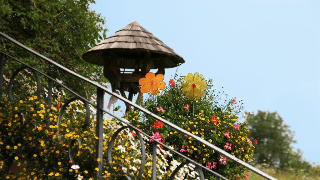 Brunhilde Pension Buerserberg Hotel outdoor area - Brunhilde_Pension-Buerserberg-Hotel_outdoor_area-5-436362.jpg
