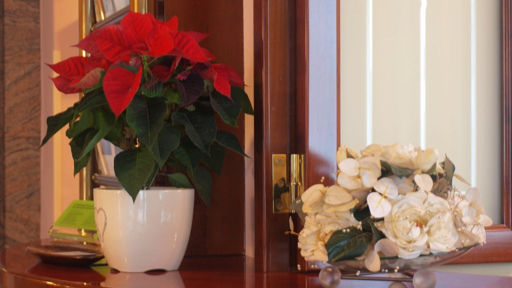 Hallerhof Bad Hall Hotelhalle - Hallerhof-Bad_Hall-Hotelhalle-2-437330.jpg