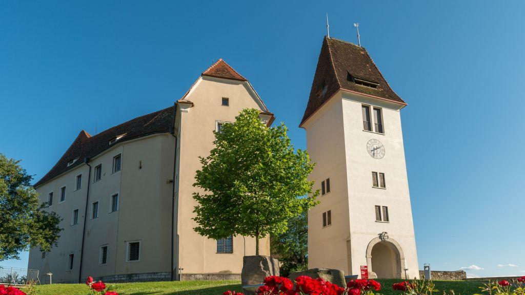 Schloss Seggau Leibnitz Hotel outdoor area - Schloss_Seggau-Leibnitz-Hotel_outdoor_area-3-522824.jpg