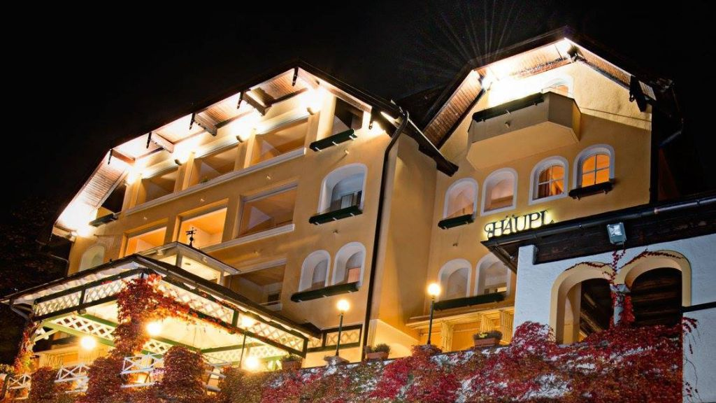 Hotel Restaurant Haeupl Seewalchen am Attersee Exterior view - Hotel_Restaurant_Haeupl-Seewalchen_am_Attersee-Exterior_view-4-651758.jpg