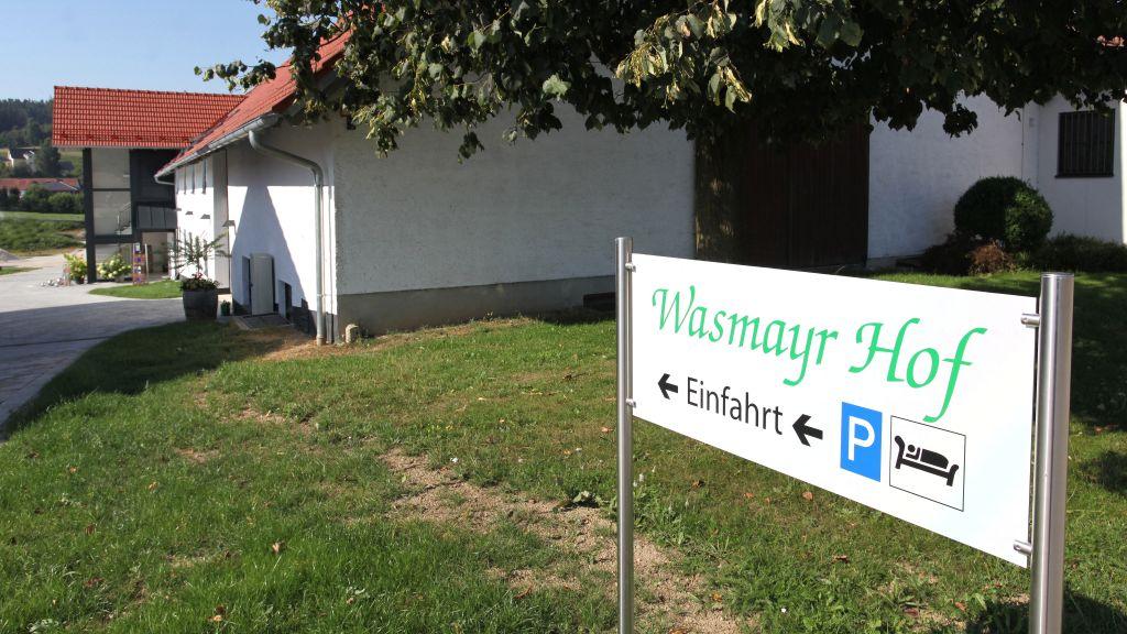Wasmayr Hof Altdorf Hotel outdoor area - Wasmayr_Hof-Altdorf-Hotel_outdoor_area-1-779380.jpg