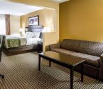 Camera Econo Lodge Inn and Suites Monroe