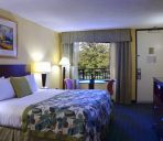 Camera WYNDHAM LK BUENA VISTA DISNEY