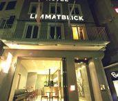 Limmatblick Zürich