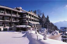 Hotel De la Foret Montana