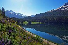 Waldhaus am See St. Moritz