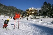 Hotel Berghof Amaranth Interlaken