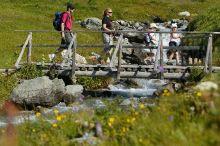 Alpenhotel zur Wildi Wiler