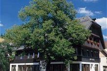 Adler Gasthof Schramberg