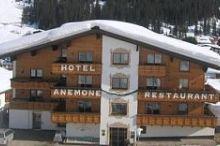 Anemone Lech am Arlberg