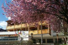 Olimpionico Hotel Castello-Molina di Fiemme