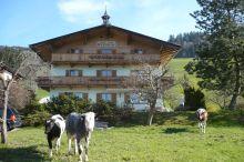 Wieshof Garni Kirchberg in Tirol