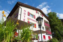 Hotel Sörenberg Sörenberg-Flühli