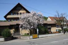 Gasthof Neun Linden Ihringen