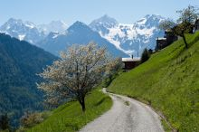 Montagne Alternative Champex