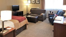 Comfort Inn Farmington Hills - Farmington Hills (Michigan)