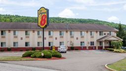 Hotel Super 8 by Wyndham Sidney NY - Sidney (New York)